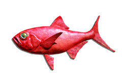 Rode geïsoleerdeu vissen Royalty-vrije Stock Fotografie