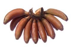 Rode Geïsoleerdew Bananen Royalty-vrije Stock Fotografie