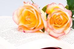 Rode geel nam over een boek toe Stock Fotografie