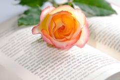 Rode geel nam over een boek toe royalty-vrije stock foto