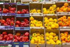 Rode, gele en oranje groene paprika's in opslag stock afbeeldingen