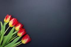 Rode gele tulpen op zwarte achtergrond Royalty-vrije Stock Afbeeldingen