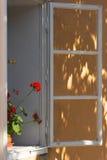 Rode geranium op de vensterbank Stock Afbeeldingen