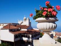 Rode geranium over de daken van La Orotava, Tenerife Royalty-vrije Stock Afbeeldingen