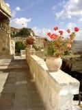 Rode Geraniums op een terras royalty-vrije stock fotografie