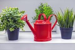 Rode gieter voor het water geven van bloemen en installaties royalty-vrije stock foto