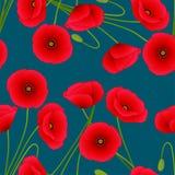 Rode Graanpapaver op Indigo Blauwe Achtergrond Vector illustratie stock illustratie