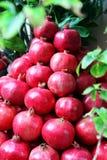Rode granaatappelvruchten bij de markt, Sicilië Royalty-vrije Stock Foto's