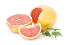 Rode grapefruit royalty-vrije stock fotografie