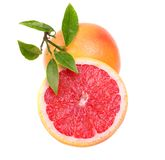 Rode grapefruit Stock Foto's