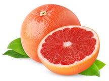 Rode grapefruit stock fotografie