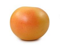 Rode grapefruit stock afbeelding