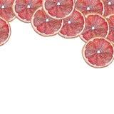 Rode Grapefruit op bovenkant Royalty-vrije Stock Afbeelding