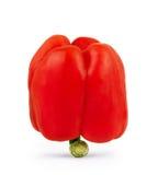 Rode groene paprika die op witte achtergrond, groene paprikafoto wordt geïsoleerd, Stock Afbeeldingen