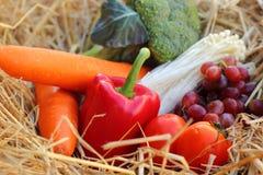 Rode groene paprika, groenten en vruchten Stock Foto