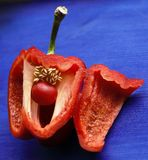 Rode groene paprika op blauwe achtergrond Royalty-vrije Stock Afbeelding