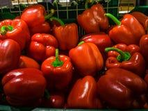 Rode groene paprika's Royalty-vrije Stock Foto