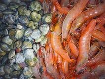 Rode grote garnalen en grijze zeeschelpen, dichte mening stock afbeelding