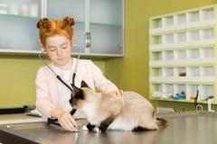 Rode haired meisjes ausculting kat met stethoscoop stock fotografie