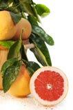 Rode Halve en Gehele Grapefruit royalty-vrije stock fotografie
