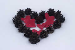 Rode hart en denneappel Royalty-vrije Stock Foto's