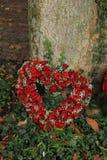 Rode Hart gevormde sympathiebloemen royalty-vrije stock afbeelding