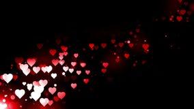 Rode harten die op de zwarte achtergrond vliegen Animatie van de de vakantie de abstracte lijn van de valentijnskaartendag stock videobeelden