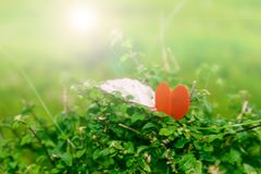 Rode hartvorm bovenop een gras met gloed effetcs Royalty-vrije Stock Afbeelding