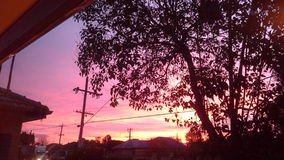 Rode hemel bij de verrukking van nachtshepards Royalty-vrije Stock Fotografie