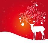 Rode herten, Royalty-vrije Stock Afbeelding
