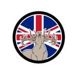 Rode Hertenunie Jack Flag Icon Stock Foto's