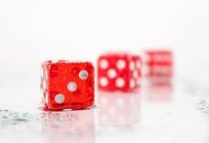Rode het spelen beenderen op een glasoppervlakte Stock Fotografie