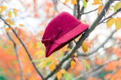 Rode hoed op de herfstboom royalty-vrije stock fotografie