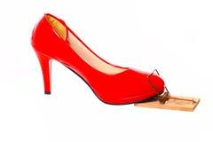 Rode hoge hiel in een muizeval Royalty-vrije Stock Fotografie
