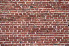Rode horizontale bakstenen muur - Stock Fotografie