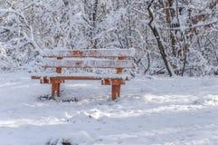 Rode houten die bank met sneeuw in het koude landelijke bos wordt behandeld Stock Foto's