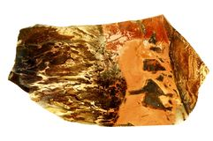 Rode jaspis Stock Afbeeldingen