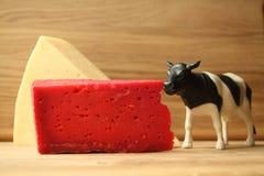 Rode kaas en houten lijst Stock Foto