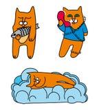 Rode katten Royalty-vrije Stock Foto's
