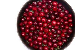 Rode kersen in ronde bakvorm Royalty-vrije Stock Foto