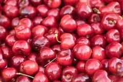 Rode kersentextuur als achtergrond, gezonde organische vruchten vers Stock Afbeeldingen