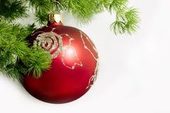 Rode Kerstmisbal Stock Foto
