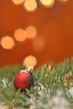 Rode Kerstmisbal in pijnboom stock afbeeldingen
