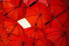 Rode parapluachtergrond Stock Foto