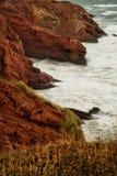 Rode klip in Magdalen-eilanden Royalty-vrije Stock Afbeeldingen