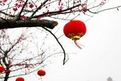 Rode lantaarn Stock Foto's