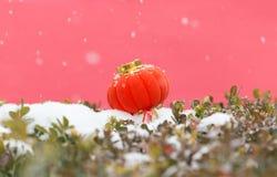 Rode lantaarns in de sneeuw stock foto's