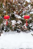 Rode lantaarns in de sneeuw stock foto