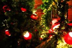 Rode lantaarns op een tak van een Kerstboom op een rode bakstenen muurachtergrond Stock Afbeeldingen