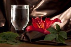 Rode Lelie met Glas royalty-vrije stock afbeeldingen
